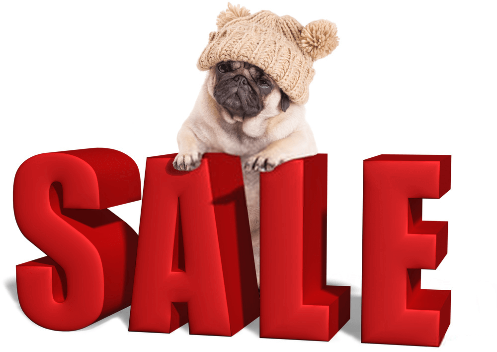 Puppies For Sale Tips